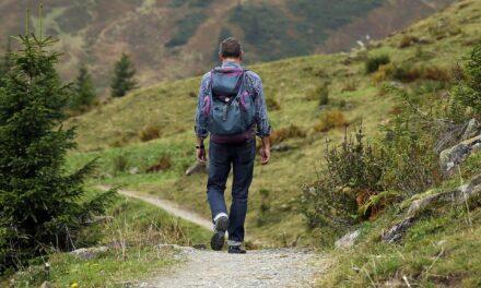 Brug naturens vand til at slukke din tørst når du er på vandretur
